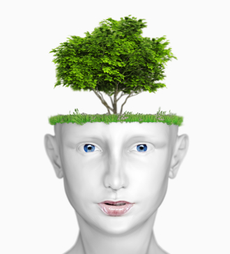 mental growth Psychology definition of mental growth: the idea that an individual's mental abilities improve with age.