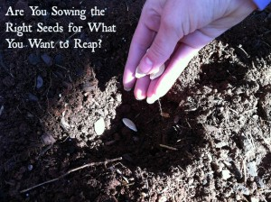 Are You Sowing the Right Seeds for What You Want to Reap?
