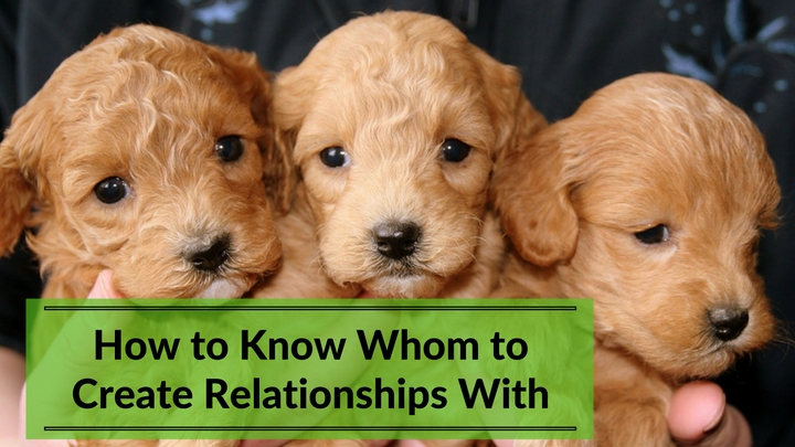 How to Know Whom to Create Relationships With